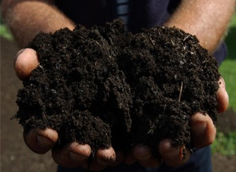 Compost promotion for your winter garden
