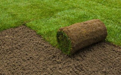 Lawn Laying – 10% Discount