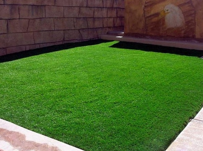 Ensure your grass is Evergreen