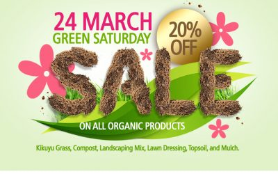 Green Saturday Sale