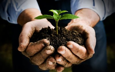 A healthy garden starts with healthy soil, so make your garden a happy one!