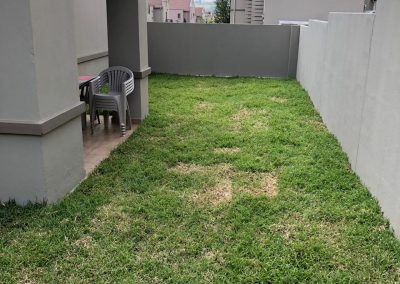 Grass Factory Transformation