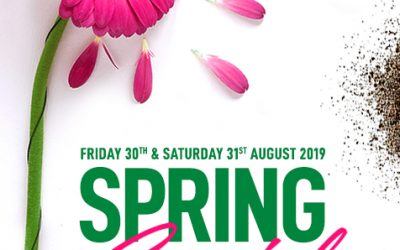 Grass Factory Spring Special 30 & 31 August 2019