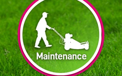 Garden Maintenance for sectional title complexes, estates and schools.